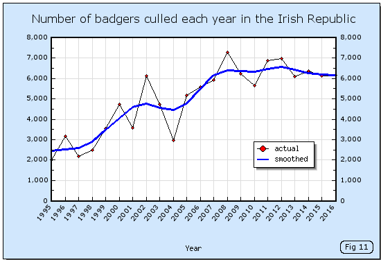 Number of badgers culled each year in the Irish Republic